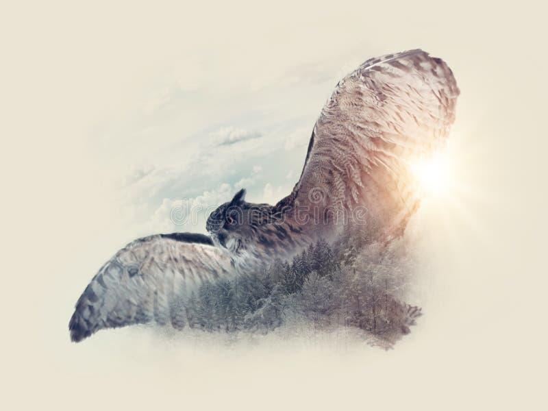 Πουλί που πετά στον ουρανό στοκ φωτογραφία