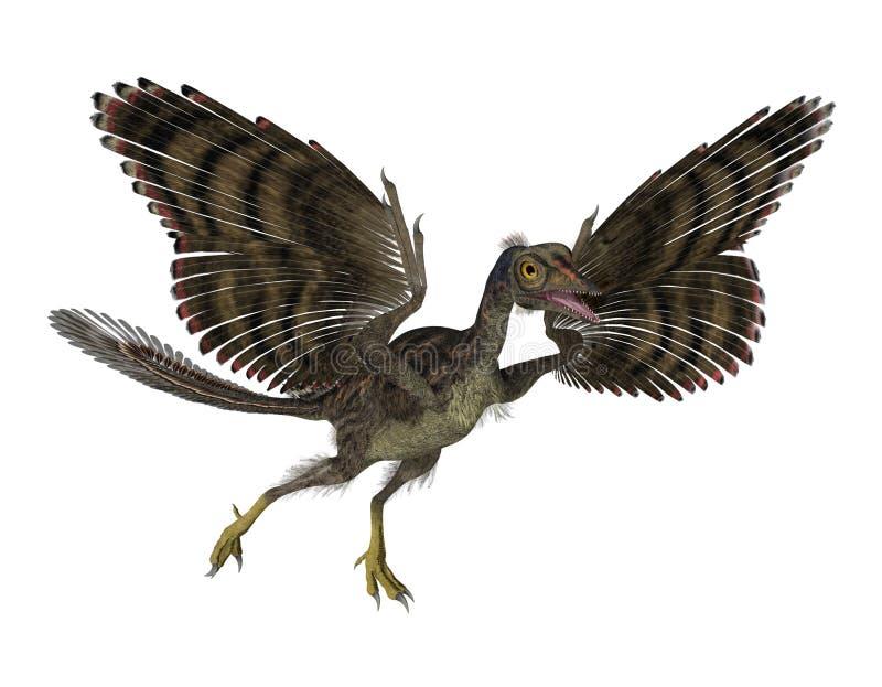 πουλί προϊστορικό ελεύθερη απεικόνιση δικαιώματος