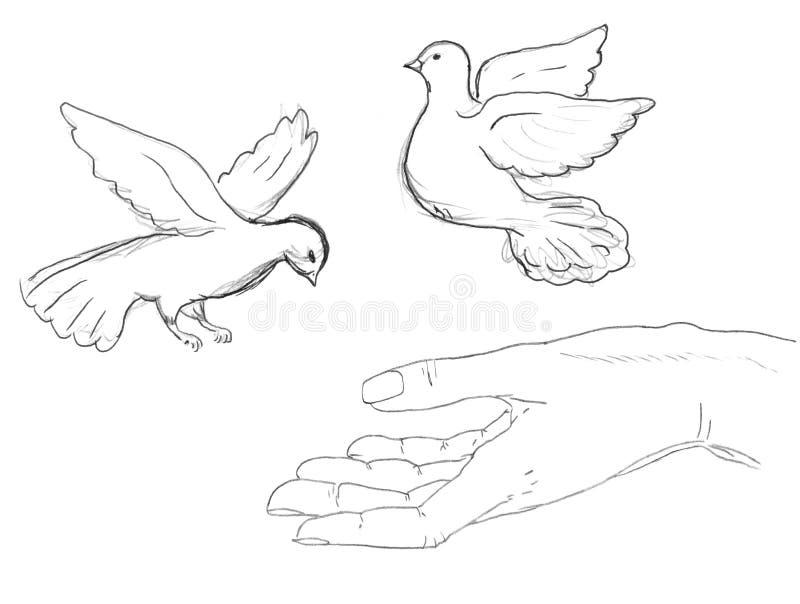 Download πουλιά που πετούν τον άνθρ απεικόνιση αποθεμάτων. εικονογραφία από μύγα - 13176046