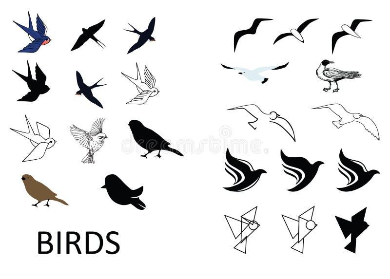 πουλιά που τίθενται διαν απεικόνιση αποθεμάτων