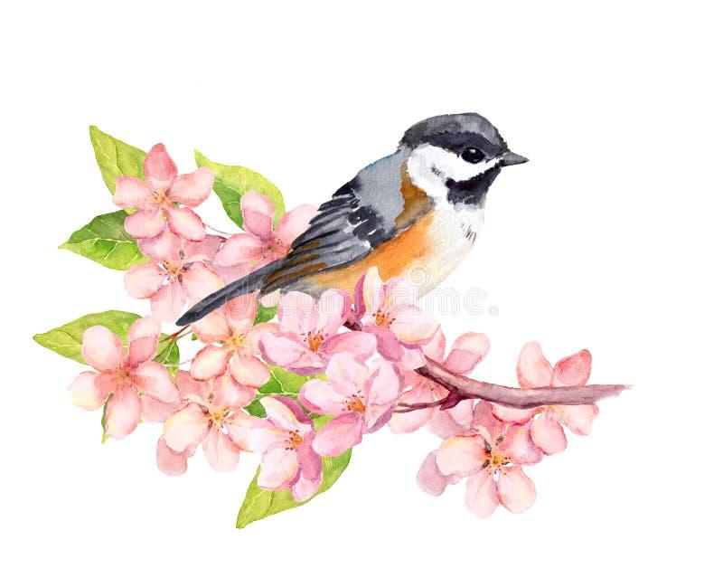 Πουλί στον κλάδο ανθών με τα λουλούδια watercolor ελεύθερη απεικόνιση δικαιώματος