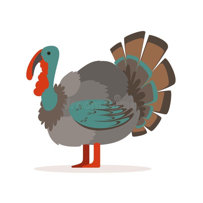 Πουλί της Τουρκίας, διανυσματική απεικόνιση καλλιέργειας πουλερικών διανυσματική απεικόνιση