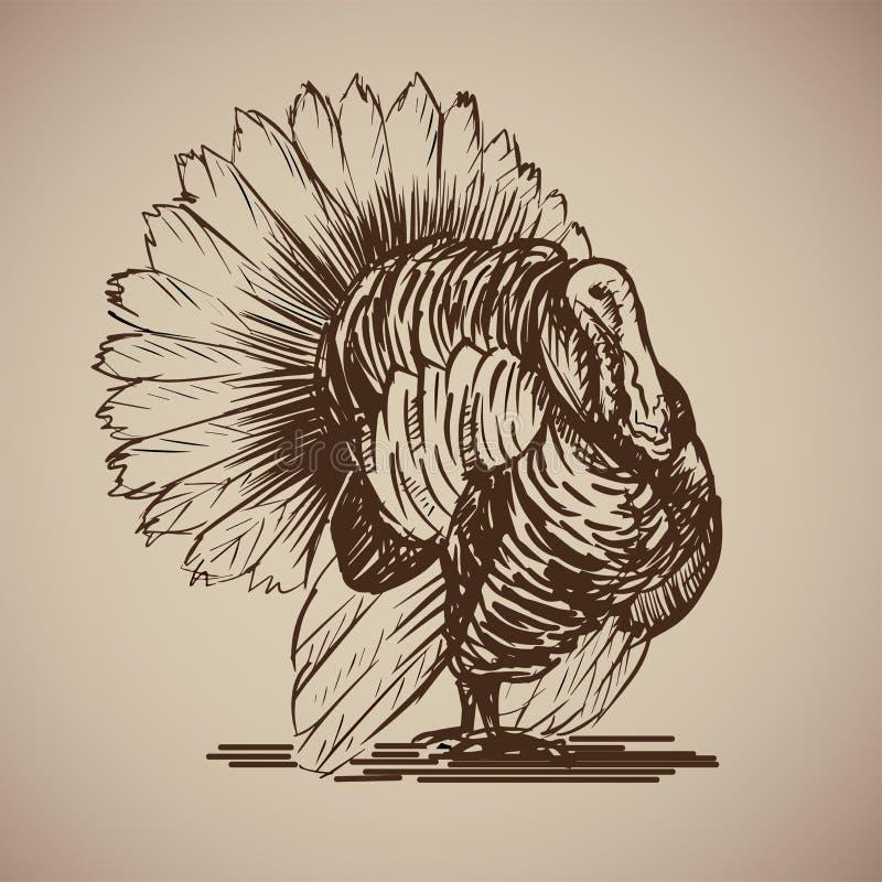 Πουλί Τουρκία στο ύφος σκίτσων διανυσματική απεικόνιση