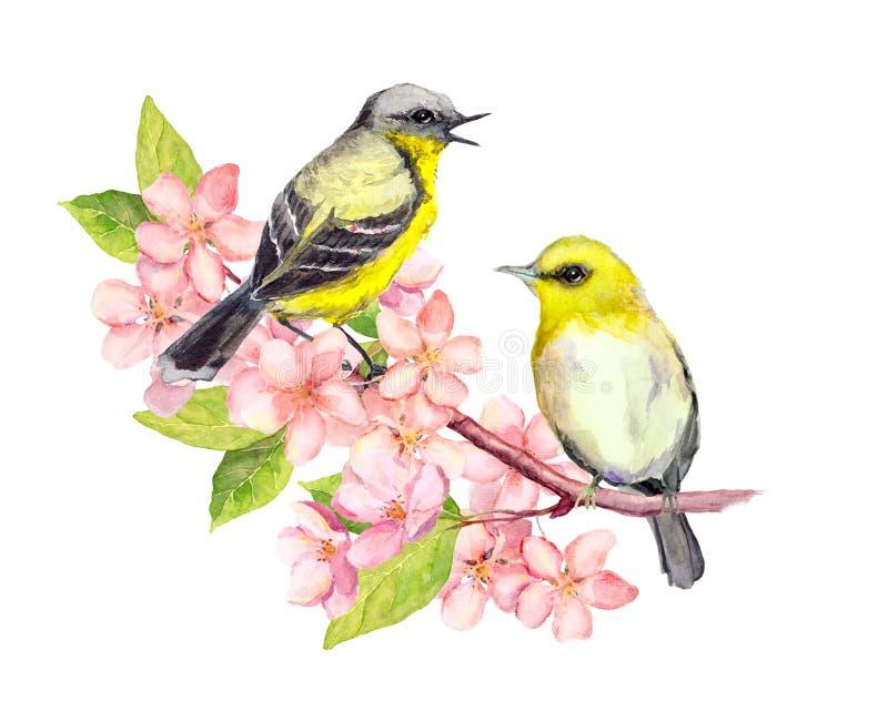 Πουλιά στον κλάδο ανθών με τα λουλούδια watercolor ελεύθερη απεικόνιση δικαιώματος