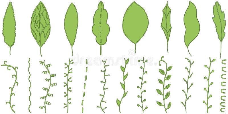 Που σύρεται το χέρι φεύγει doodle Πράσινοι φύλλα και μίσχοι απεικόνιση αποθεμάτων