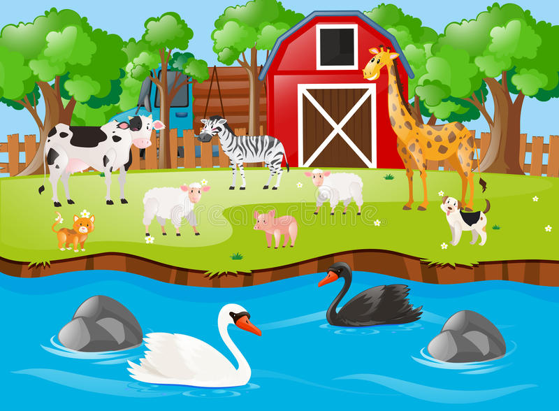 Πολλά ζώα στην αυλή απεικόνιση αποθεμάτων