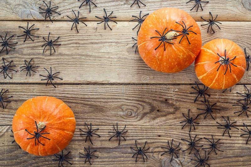 Πολλές μαύρες αράχνες και μικρές κολοκύθες στους παλαιούς ξύλινους πίνακες στοκ φωτογραφίες