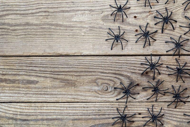 Πολλές μαύρες αράχνες στους παλαιούς ξύλινους πίνακες Υπόβαθρο για την αίθουσα στοκ φωτογραφίες με δικαίωμα ελεύθερης χρήσης