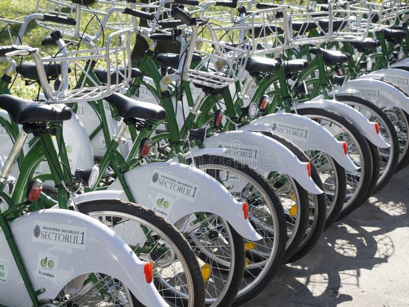 Ποδήλατα για το μίσθωμα στοκ φωτογραφίες με δικαίωμα ελεύθερης χρήσης