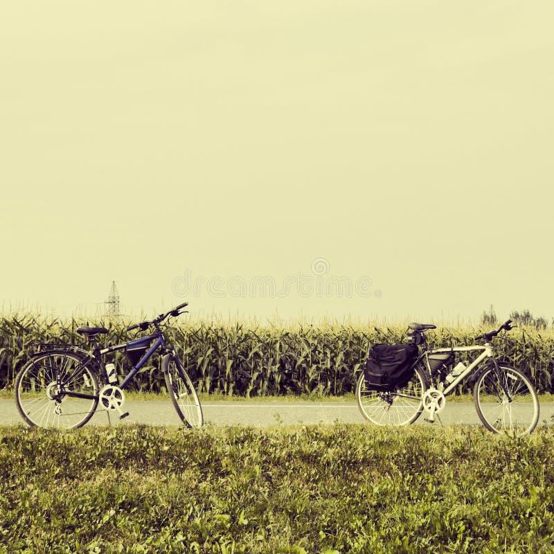 Ποδήλατα κοντά σε έναν τομέα καλαμποκιού στοκ εικόνες
