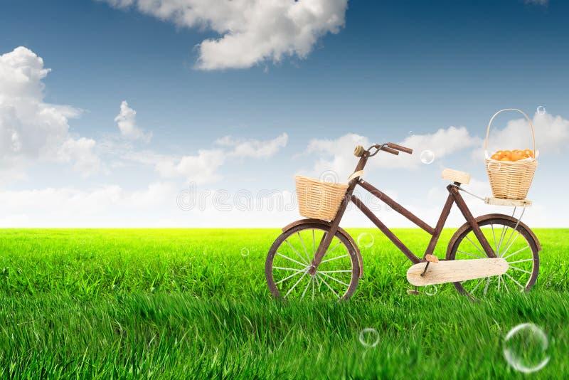 Ποδήλατο στο πράσινο πολύβλαστο λιβάδι με το μπλε ουρανό στοκ εικόνα με δικαίωμα ελεύθερης χρήσης