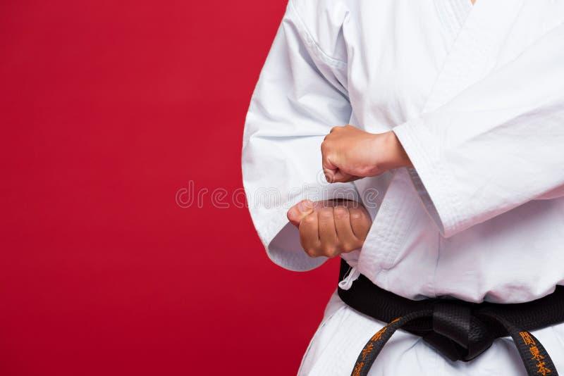 Πολεμικές τέχνες στοκ φωτογραφία με δικαίωμα ελεύθερης χρήσης