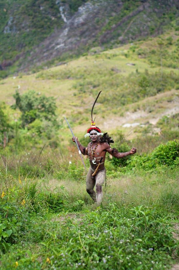 Πολεμιστές μιας φυλής Papuan στοκ φωτογραφίες με δικαίωμα ελεύθερης χρήσης