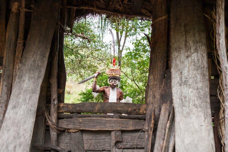 Πολεμιστές φυλών της Dani στοκ φωτογραφίες με δικαίωμα ελεύθερης χρήσης