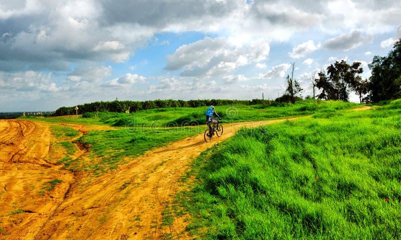Ποδηλάτης βουνών στο πεδίο στοκ εικόνες με δικαίωμα ελεύθερης χρήσης