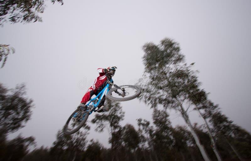 Ποδηλάτης βουνών στοκ εικόνες με δικαίωμα ελεύθερης χρήσης