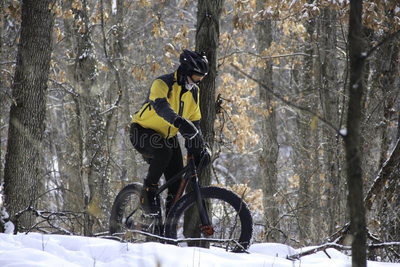 Ποδηλάτης στο χιονώδες δάσος στοκ φωτογραφίες