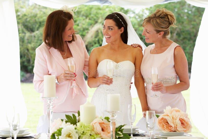 Πολυ γυναίκες παραγωγής στο γάμο στοκ φωτογραφία