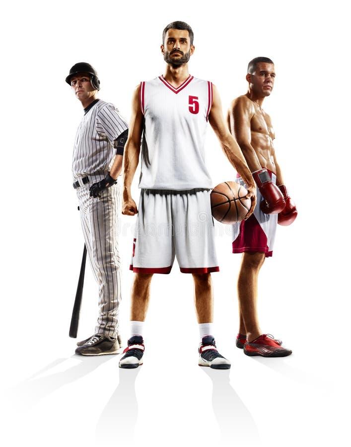 Πολυ εγκιβωτισμός μπέιζ-μπώλ καλαθοσφαίρισης αθλητικών κολάζ στοκ φωτογραφίες