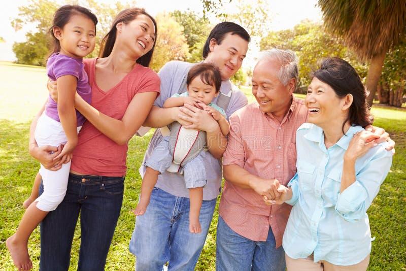 Πολυ οικογένεια παραγωγής που περπατά στο πάρκο από κοινού στοκ εικόνα