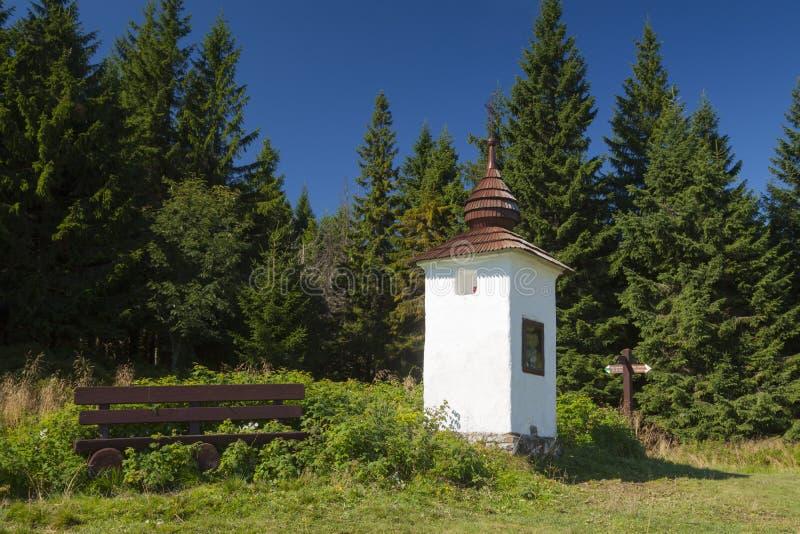 Πολωνία, βουνά Gorce, η λάρνακα κράσπεδων στοκ φωτογραφία με δικαίωμα ελεύθερης χρήσης