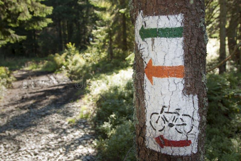 Πολωνία, βουνά Gorce, καμμένος σημάδια ιχνών στοκ φωτογραφία