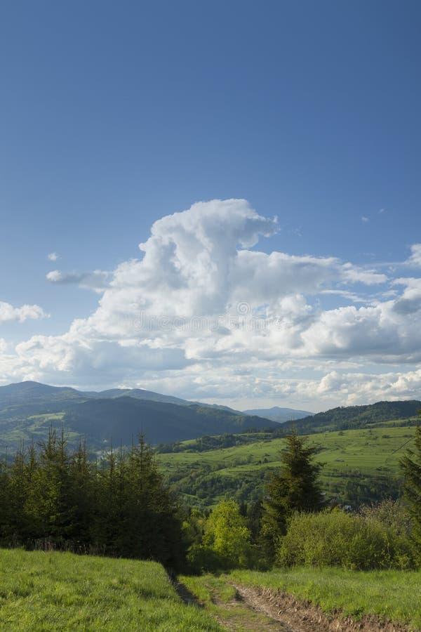 Πολωνία, πανοραμικό Viev της σειράς βουνών Gorce, θεαματικό Clou στοκ εικόνα με δικαίωμα ελεύθερης χρήσης