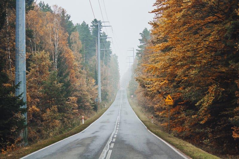 Πολωνικό φθινόπωρο στοκ εικόνες