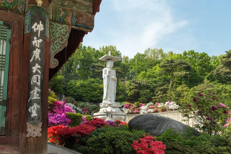 Πολύβλαστα βλάστηση και άγαλμα του Βούδα στο ναό Bongeunsa στη Σεούλ στοκ φωτογραφία