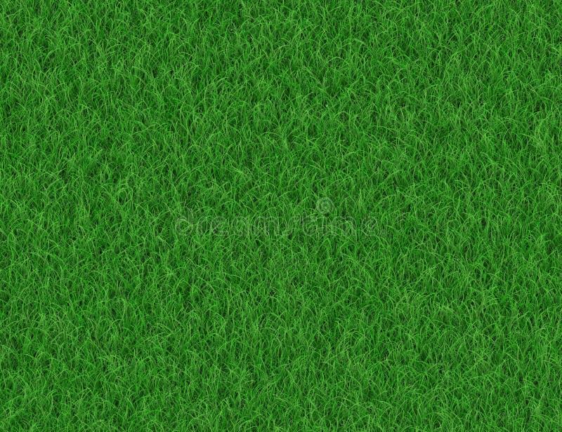 Πολύβλαστα πράσινα υπόβαθρα χλόης διανυσματική απεικόνιση
