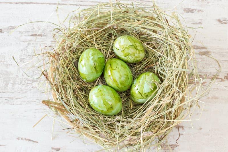 Πράσινα αυγά Πάσχας σε μια φωλιά στοκ εικόνες