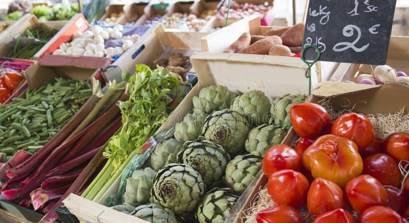 πράσινα λαχανικά αρθρόποδων στοκ εικόνες με δικαίωμα ελεύθερης χρήσης