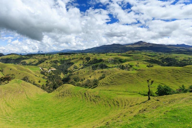 πράσινα βουνά τοπίων στοκ φωτογραφίες με δικαίωμα ελεύθερης χρήσης