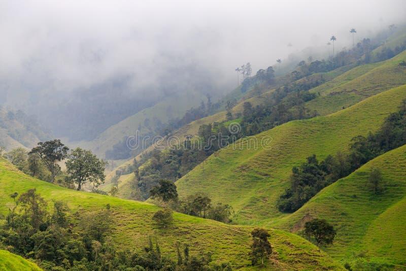 πράσινα βουνά τοπίων στοκ εικόνες με δικαίωμα ελεύθερης χρήσης