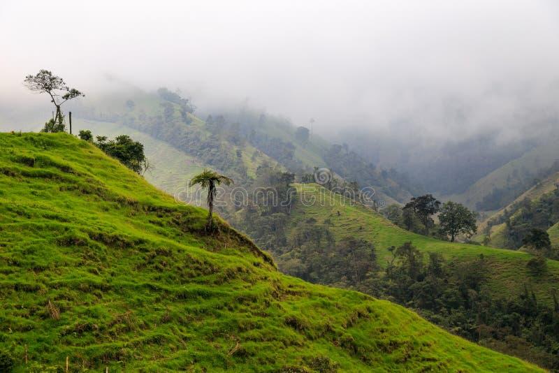 πράσινα βουνά τοπίων στοκ φωτογραφίες