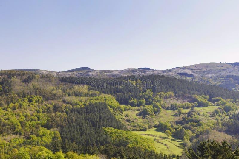 Πράσινα βουνά Biscay, βασκική χώρα, Ισπανία στοκ φωτογραφίες με δικαίωμα ελεύθερης χρήσης