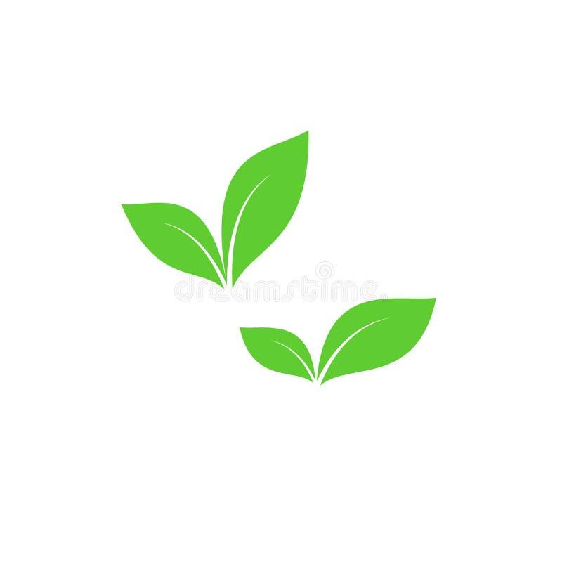 Πράσινα διανυσματικά σύμβολα φύλλων απεικόνιση αποθεμάτων