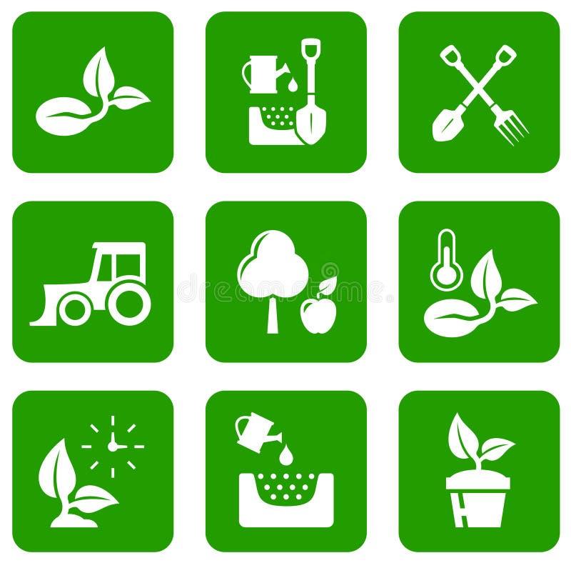 Πράσινα εικονίδια κήπων διανυσματική απεικόνιση