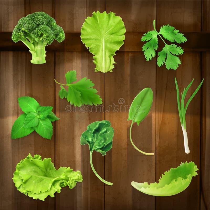 Πράσινα, διανυσματικά εικονίδια απεικόνιση αποθεμάτων