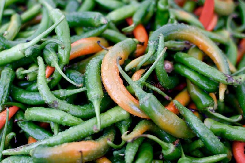 Πράσινα και κόκκινα chilis στην αγορά μετά από τη βροχή στοκ εικόνες