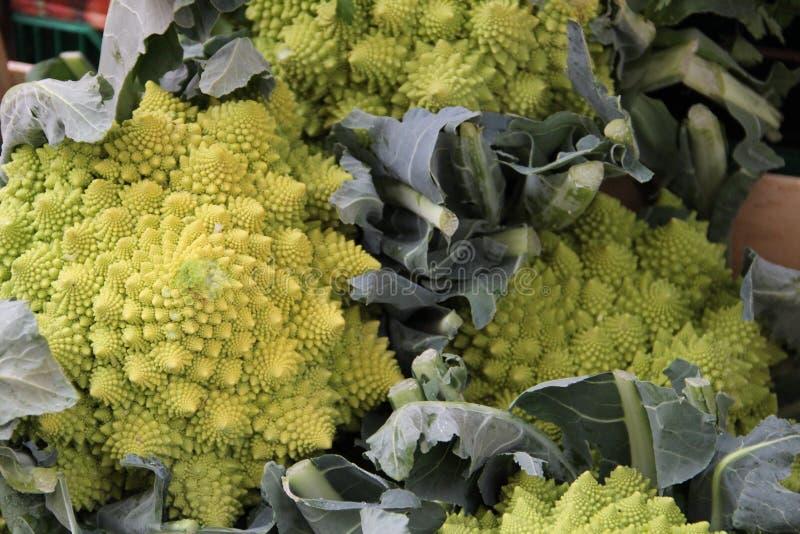 Πράσινα κεφάλια Broccoflower στοκ εικόνες με δικαίωμα ελεύθερης χρήσης
