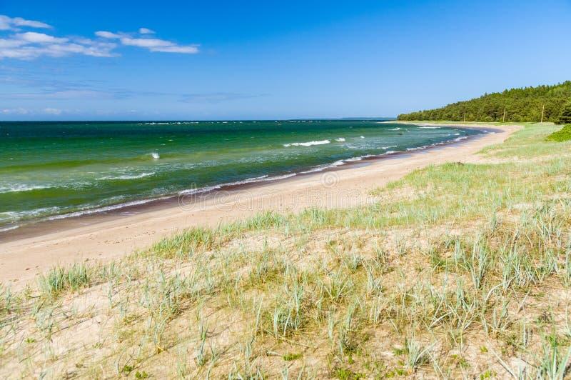 Πράσινα κύματα της θάλασσας της Βαλτικής στοκ φωτογραφία