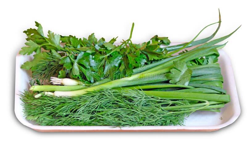 Πράσινα - μαϊντανός, κρεμμύδι, μάραθο - στο λιανικό δίσκο στοκ εικόνα με δικαίωμα ελεύθερης χρήσης