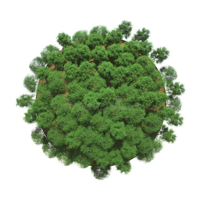 πράσινα μικρά δέντρα πλανητών ελεύθερη απεικόνιση δικαιώματος