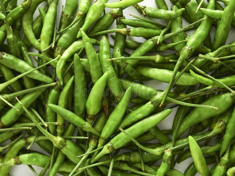 πράσινα πιπέρια πιπεριών τσίλι στοκ εικόνες