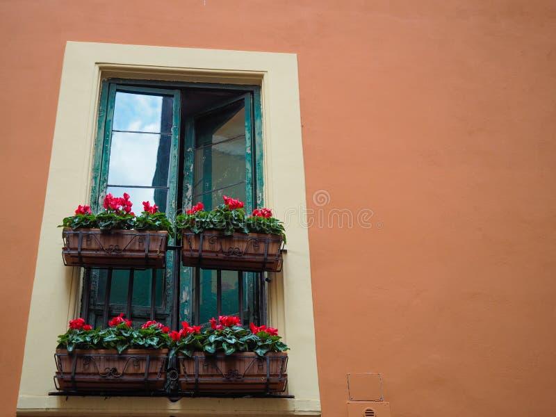 Πράσινα ρωμαϊκά παράθυρα που ανοίγουν με τα κιβώτια λουλουδιών στοκ εικόνες με δικαίωμα ελεύθερης χρήσης