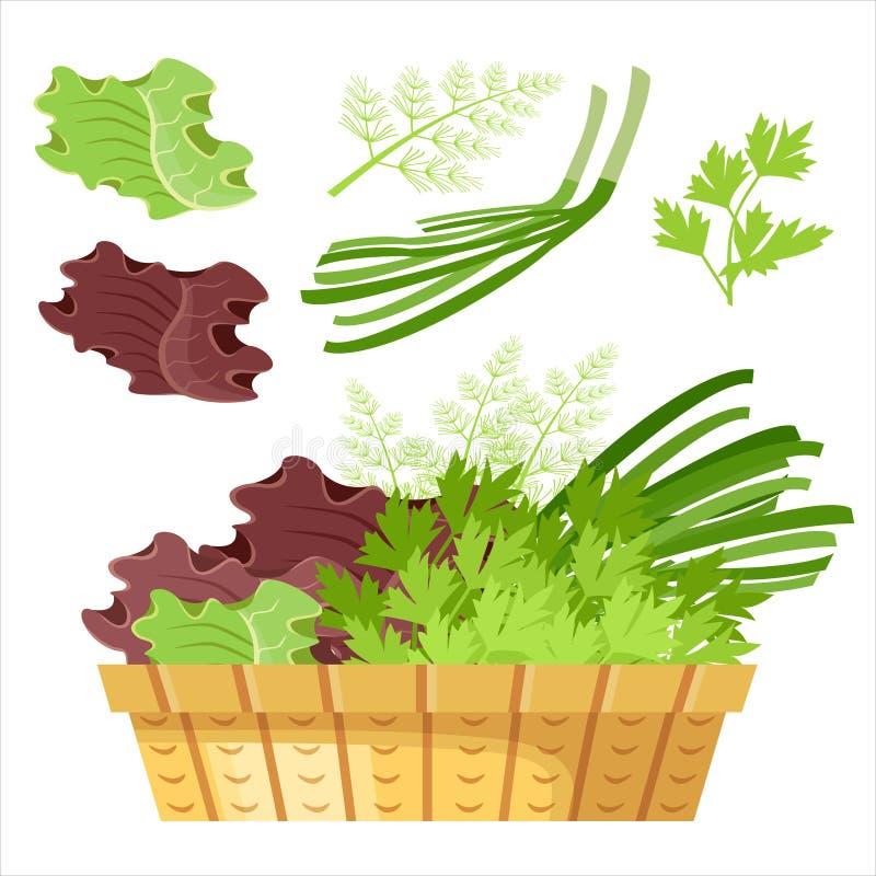 Πράσινα σαλάτας σε ένα καλάθι ελεύθερη απεικόνιση δικαιώματος