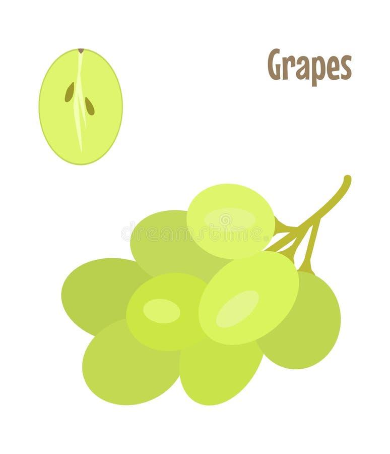 Πράσινα σταφύλια και ένα κομμάτι περικοπών Ακατέργαστο διάνυσμα τροφίμων στοκ εικόνες