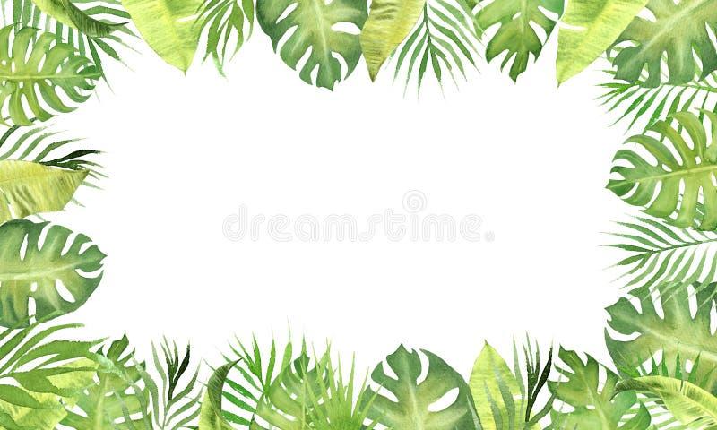 Πράσινα τροπικά φύλλα πλαισίων συνόρων Watercolor monstera, φύλλα φοινίκων, φύλλα φυτών μπανανών ελεύθερη απεικόνιση δικαιώματος