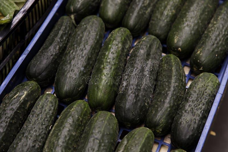 Πράσινα φρέσκα αγγούρια σε μια αγορά στοκ φωτογραφίες